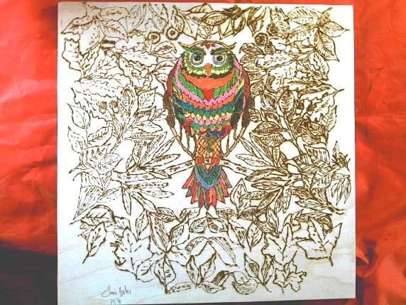 owl-oct-10-more-light